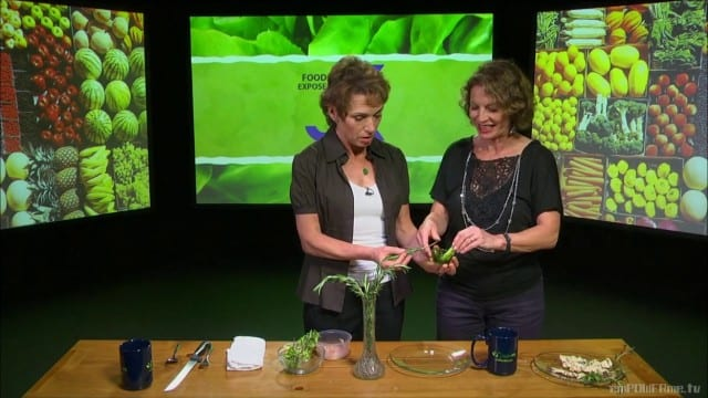 Zipstrip Herb Stripper – FRANCE – Food Exposed: International Food & Tools Series