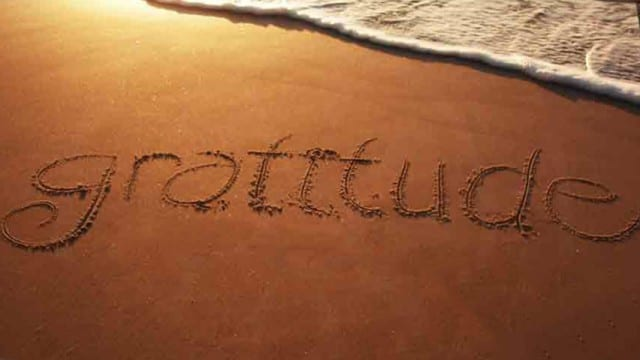Gratitude: A Health Essential on Wellness For Realists